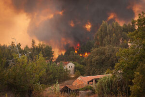 Why You Should Hire a California Wildfire Attorney for Claims on Property Losses